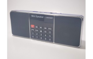 Gurbani Radio (Bluetooth)