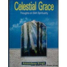 Celestial Grace - Thoughts on Sikh Spirituality
