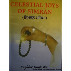 Celestial Joys of Simran